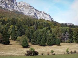 Landscapes of Dauphiné - Rock walls of the Chartreuse mountain range, forest and grassland