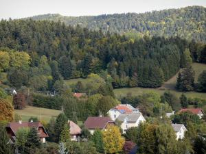 Landscapes of Dauphiné - Houses surrounded by trees and meadows, forest overhanging the place