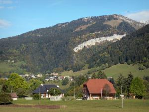 Landscapes of Dauphiné - Chartreuse Regional Nature Park (Massif de la Chartreuse): houses, trees, pastures and mountain covered with forest