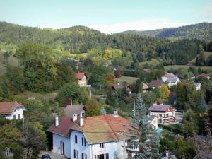 Landscapes of Dauphiné - Houses, trees and forest