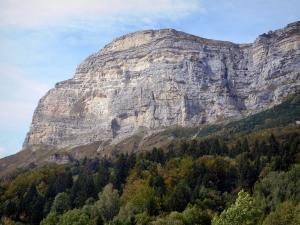 Landscapes of Dauphiné - Chartreuse Regional Nature Park (Chartreuse mountains): Dent de Crolles (mountain) forest