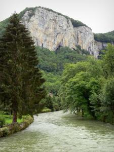 Landscapes of the Doubs - Loue valley: Loue river lined with trees and cliffs (rock faces) overhanging the set; in Mouthier-Haute-Pierre