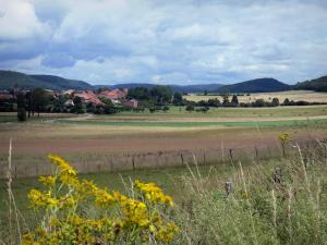 Landscapes of the Doubs - Wild flowers in foreground, fields, trees, village and hills