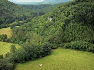 Landscapes of the Doubs - Meadows surrounded by trees and hills covered with forests