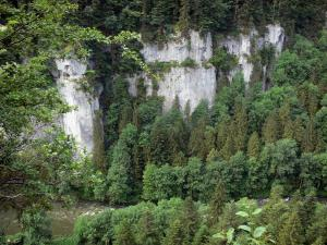 Landscapes of the Doubs - Doubs gorges: cliffs (rock faces), trees and the River Doubs