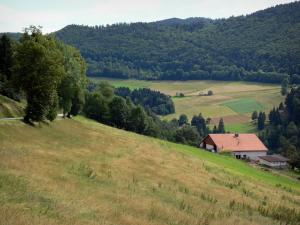 Landscapes of the Doubs - Farm, meadows, fields, trees and forest