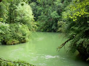 Landscapes of the Doubs - Loue river lined with trees