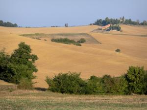 Landscapes of the Gascony - Rolling fields