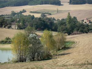 Landscapes of the Gascony - Lake, trees and fields