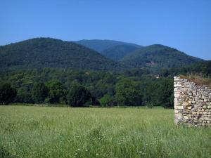 Landscapes of the Haute-Garonne - Field, stone wall, trees and Comminges hills