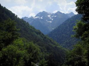 Landscapes of the Haute-Garonne - Trees, forest and Pyrenees mountains
