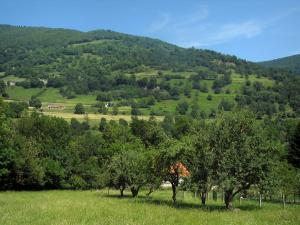 Landscapes of the Haute-Garonne - Trees, fields and Comminges hills