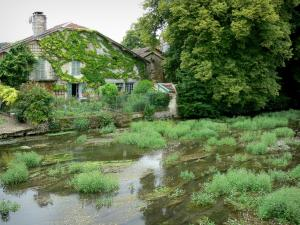 Landscapes of the Haute-Marne - Blaise valley: house and its flower garden on the banks of River Blaise, in Cirey-sur-Blaise