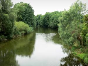 Landscapes of the Haute-Marne - Marne valley: River Marne lined with trees
