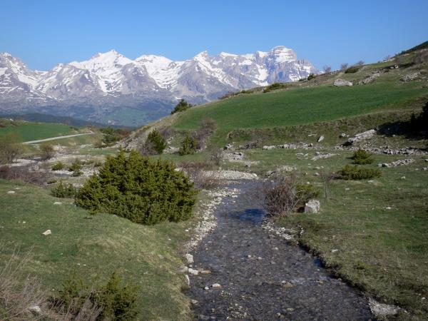 Landscapes of the Hautes-Alpes - Stream edged with prairies and shrubs, mountains tops covered with snow in background