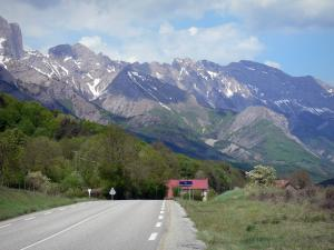 Landscapes of the Hautes-Alpes - Napoleon road with view of trees and mountains
