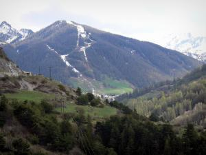 Landscapes of the Hautes-Alpes - Mountains dotted with trees and prairies