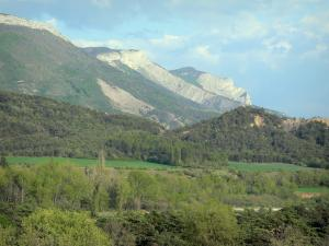 Landscapes of the Hautes-Alpes - Mountains, forest and trees