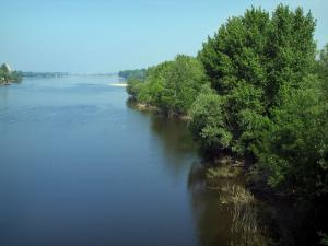 Landscapes of the Indre-et-Loire - The River Vienne in foreground, trees and confluence of the Loire and the Vienne rivers in background, in Candes-Saint-Martin