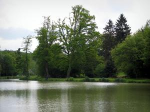 Landscapes of the Indre-et-Loire - River and trees along the water