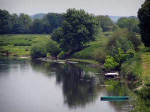 Landscapes of the Indre-et-Loire - River, trees and vegetation