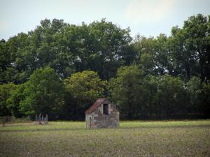 Landscapes of the Indre-et-Loire - Hut and trees