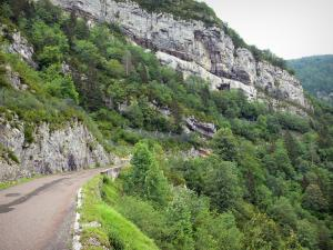 Landscapes of Jura - Road of the Flumen gorges, rock faces (cliffs) and trees; in the Upper Jura Regional Nature Park