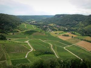 Landscapes of Jura - Vineyards (Jura vineyards), houses and forests