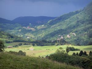 Landscapes of Jura - Meadows, fields, trees, houses and forests