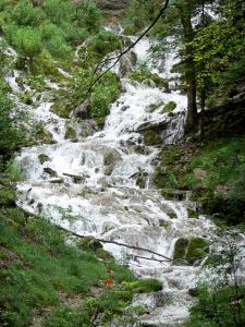 Landscapes of Jura - Sloping brook