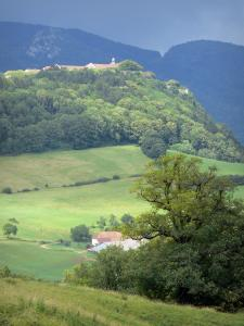 Landscapes of Jura - Meadows, hills, roofs of houses and trees