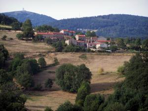 Landscapes of Loire - Pilat mountain area (Regional Natural reserve of Pilat): houses, meadows, trees, tower of the Crêt de Botte and TV broadcasting station of the Crêt de l'Oeillon in background