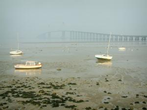 Landscapes of the Loire-Atlantique coast - Boats at ebb tide, algae and the Saint-Nazaire bridge