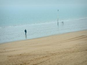 Landscapes of the Loire-Atlantique coast - Sandy beach, walker and the sea (Atlantic Ocean) in La Baule