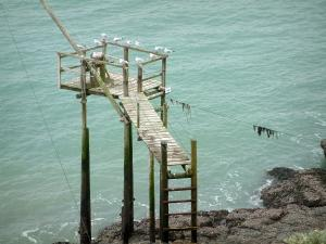 Landscapes of the Loire-Atlantique coast - Pontoon built on stilts with sea birds, cliffs and the sea (Atlantic Ocean)