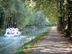 Landscapes of the Lot-et-Garonne - Boat sailing on the Garonne canal, bicycle lane of the the Voie Verte greenway (towpath) and plane trees along the water; in Damazan