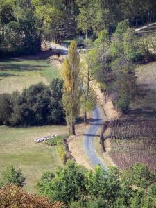 Landscapes of the Lot-et-Garonne - Small country road lined with trees and fields
