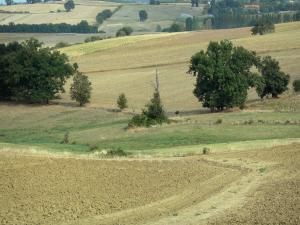 Landscapes of the Lot-et-Garonne - Succession of fields