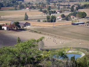 Landscapes of the Lot-et-Garonne - Lake, fields, houses and trees