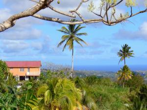 Landscapes of Martinique - House surrounded by greenery overlooking the coast of Martinique