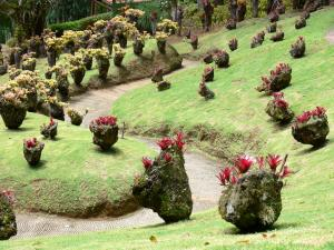 Landscapes of Martinique - Balata Gardens with bromeliads