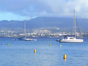 Landscapes of Martinique - Bay of Fort-de-France dotted with boats