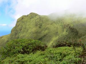 Landscapes of Martinique - Mount Pelee - Regional Park of Martinique: green slopes of the active volcano