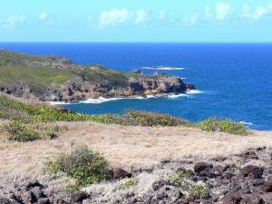 Landscapes of Martinique - Nature Reserve Caravelle peninsula - Regional Park of Martinique: walk along the coastal path