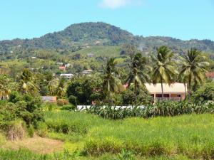 Landscapes of Martinique - Green dotted with houses