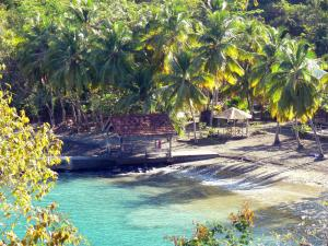 Landscapes of Martinique - View of the beach of Black Cove with its pontoon, coconut trees and turquoise waters; in the town of Anse d'Arlet