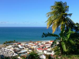 Landscapes of Martinique - View over the rooftops of Grand'Rivière and the Atlantic Ocean from the heights of the village with coconut and banana tree in the foreground