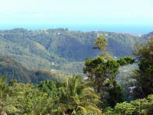 Landscapes of Martinique - Green hills