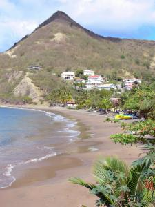 Landscapes of Martinique - Beach Petite Anse d'Arlet lined with trees and coconut trees, house facades, Morne Jacqueline and the Caribbean Sea; in the town of Anse d'Arlet