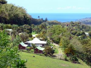 Landscapes of Martinique - Green coastal landscape